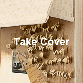 Take cover art work
