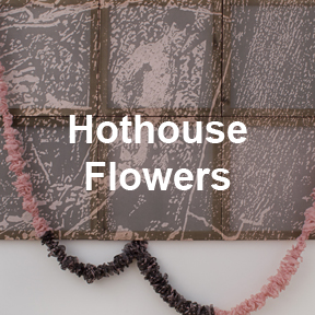 Hothouse Flowers art work